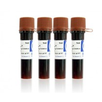 RedSafe DNA Stain (20,000 X)